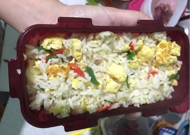 Bekal suami simple Nasi goreng putih