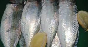 Pepes Petai Ikan Kembung