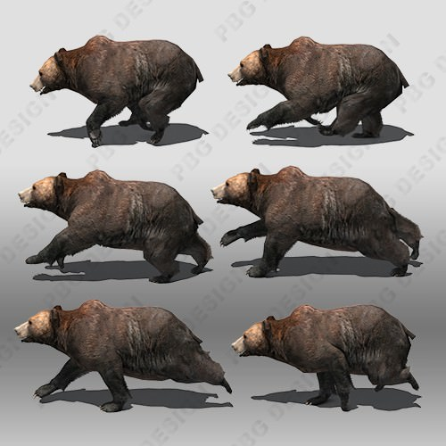 Grizzly Bear Animated 3D Model Game Ready Animated Rigged