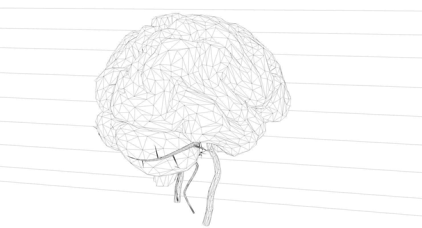 Blood Supply Of Brain