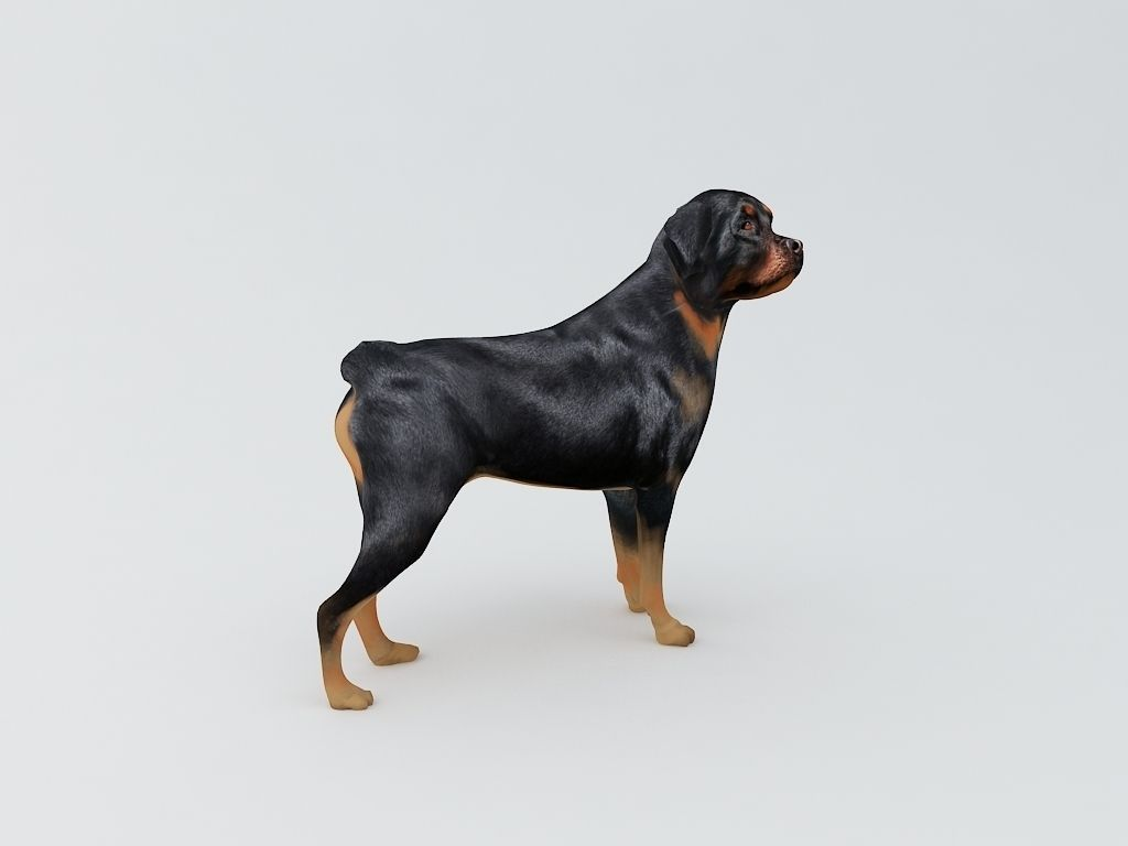 print sofa set bassett club room rottweiler dog 3d printable model ...