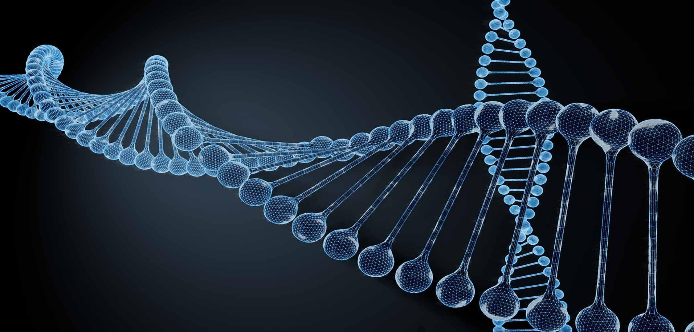 DNA Strand 3D Model C4d