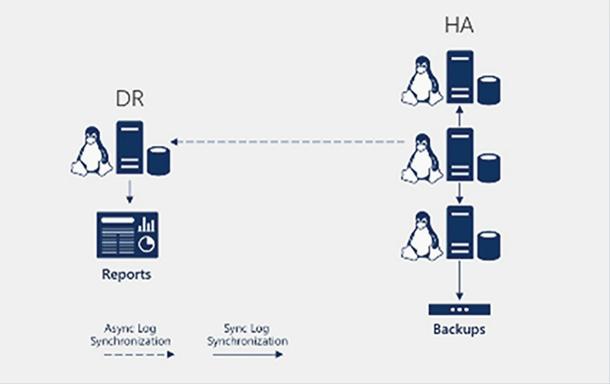 Database Security Sql Server 2017
