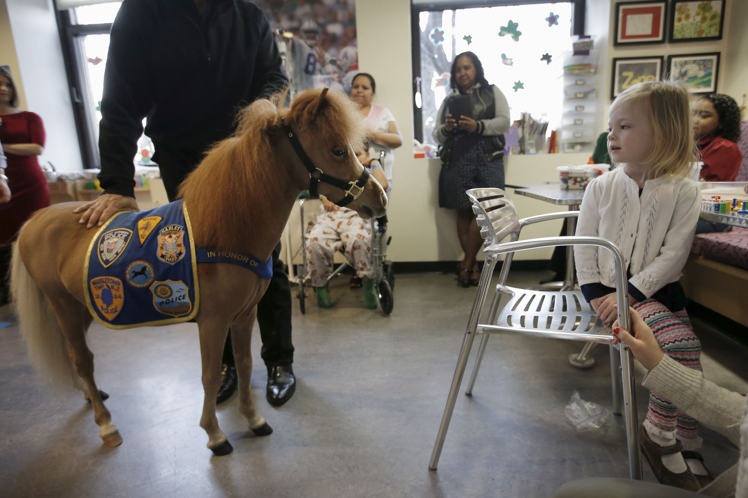 Слайд 49 из 67: Handler Jorge Garcia-Bengochea holds Honor, a miniature therapy horse from Gentle Carousel Miniature Therapy Horses, as they visit with patients at the Kravis Children's Hospital at Mount Sinai in the Manhattan borough of New York City, March 16, 2016.