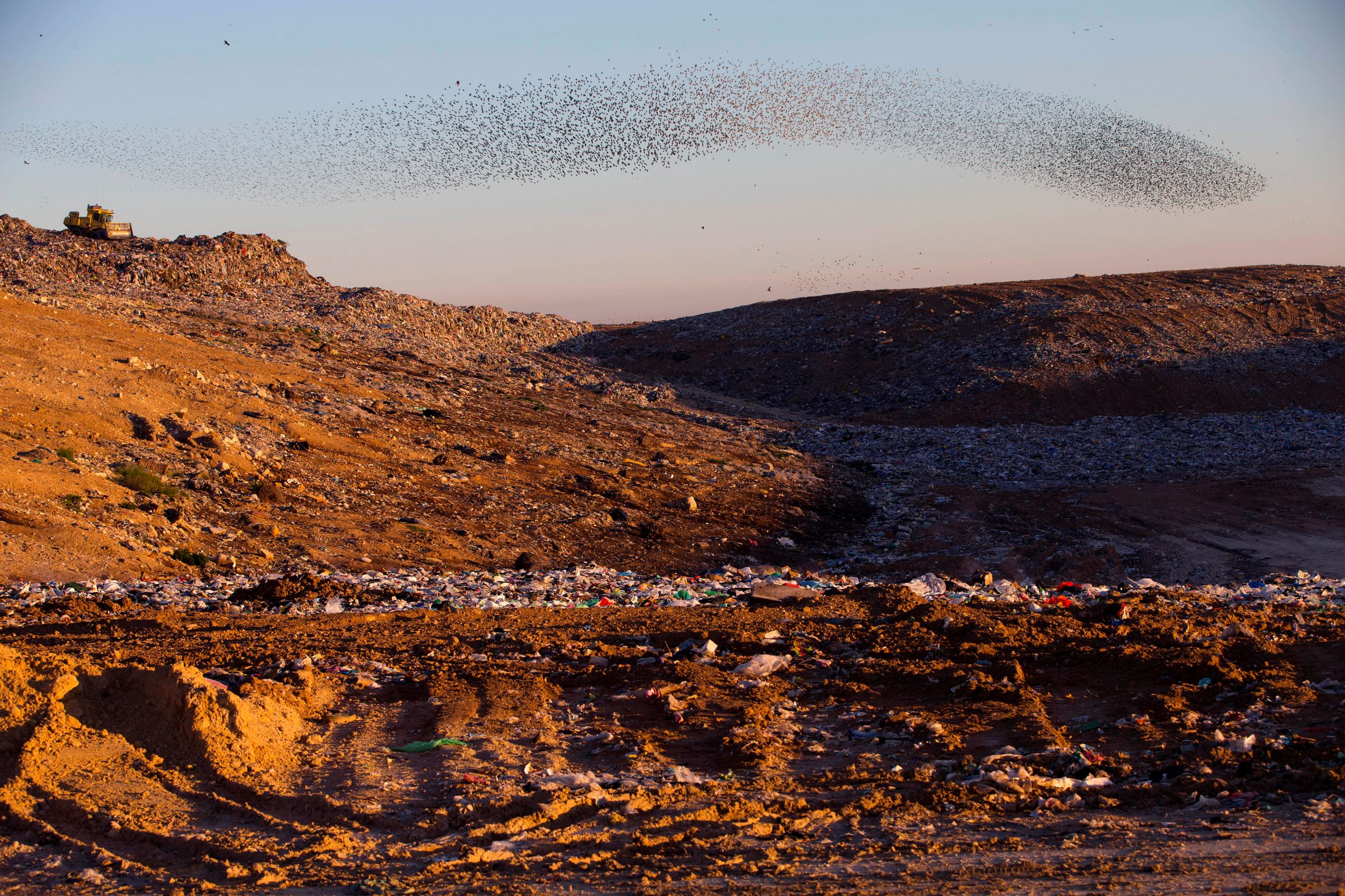 Слайд 55 из 67: A flock of migrating starlings flies over a waste dump site next to the southern Israeli Bedouin village of Rahat, Friday, Feb. 12, 2016. (AP Photo/Oded Balilty)