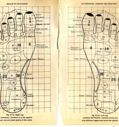 move on to the tops and sides of your feet this is where your knowledge of foot reflexology is most useful  [ 1600 x 1238 Pixel ]