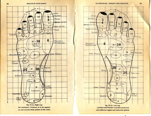 small resolution of move on to the tops and sides of your feet this is where your knowledge of foot reflexology is most useful