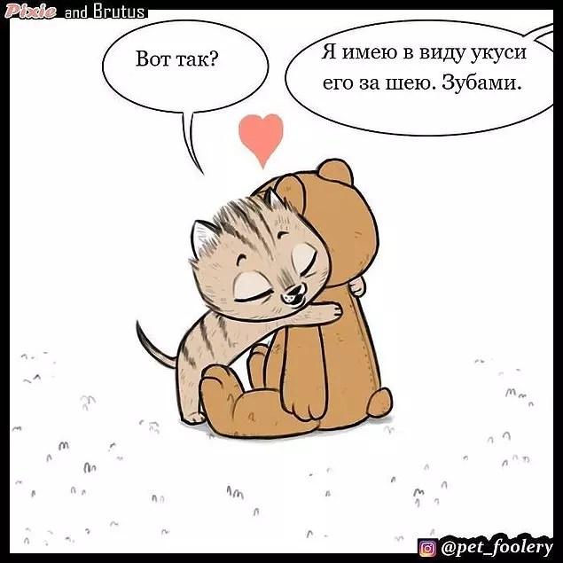 Милые и смешные комиксы про дружбу котенка Пикси и военного пса Брута, которые сделают ваш день