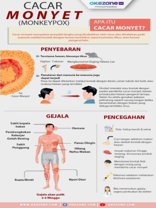 Cara Penularan Cacar Air : penularan, cacar, Ternyata, Cacar, Monyet, Dapat, Dicegah, Dengan, Vaksin, Okezone, Lifestyle