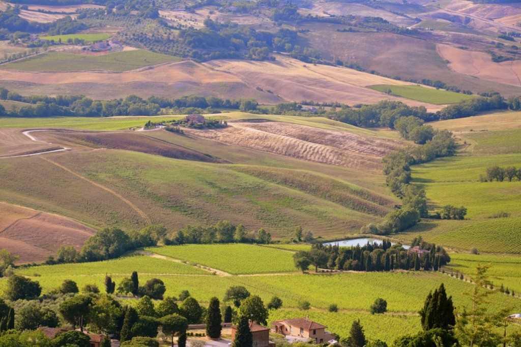 Las ondulantes colinas toscanas en el momento de la cosecha de trigo