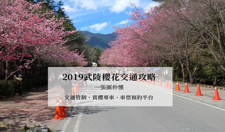 2019武陵櫻花交通攻略,一張圖秒懂|交通管制、賞櫻專車路線、車票預約平台|國光客運、豐原客運|過年旅遊