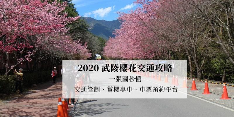 2020武陵櫻花交通管制、賞櫻專車路線(國光客運、豐原客運)、車票預約平台 | 一張圖秒懂