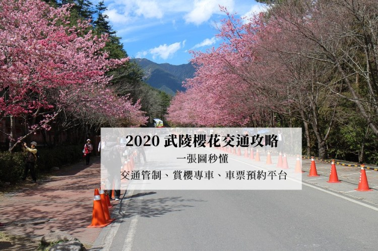 2020武陵櫻花交通攻略,一張圖秒懂|交通管制、賞櫻專車路線(國光客運、豐原客運)、車票預約平台 | 過年旅遊