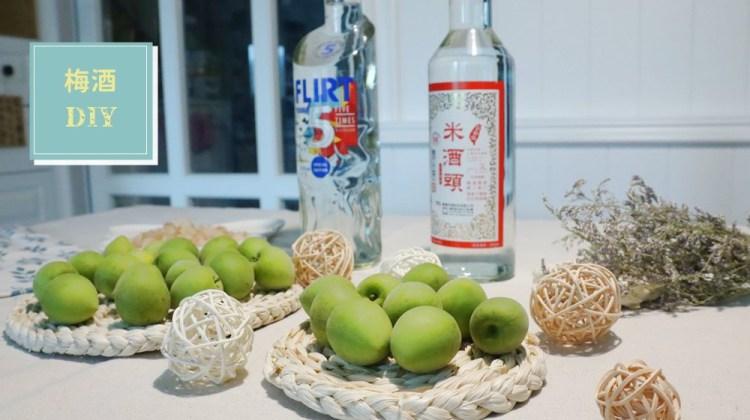 梅酒DIY,米酒、伏特加比例怎麼抓 | 梅酒怎麼做,一篇教你超簡單做法