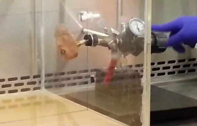 Le prototype de robot qui vomit, mis au point par des chercheurs aux Etats-Unis, permettra d'étudier la propagation du norovirus.