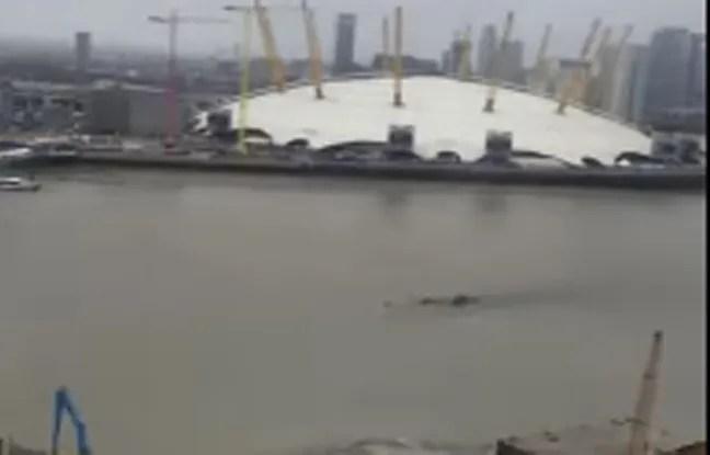 Dans les premières minutes du film, on voit une grande forme noire, évoquant la silhouette du monstre du Loch Ness, se déplacer à la surface de l'eau