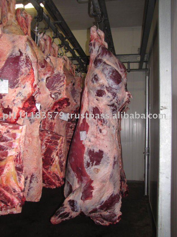 Beef Carcasses Mezzene Bovine Carcasses De Bovins