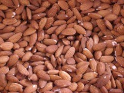 Marula Nuts productsSouth Africa Marula Nuts supplier