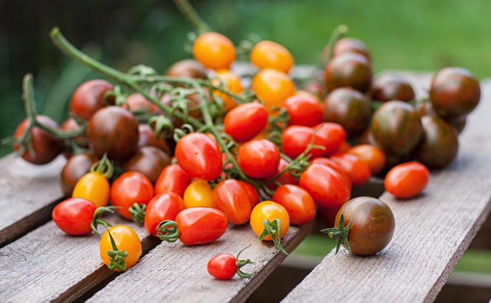 Как хранить помидоры проверенные советы