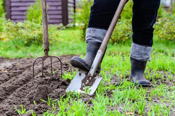 Правила подготовки вил к зимовке те же, что и для лопаты