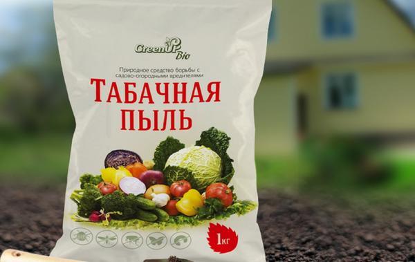 Темекі шаңы (Habinfo.ru сайтының суреттері)