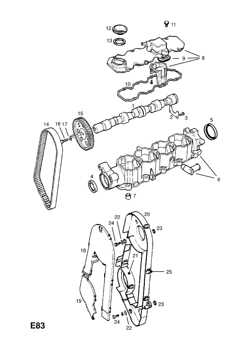 small resolution of opel timing belt