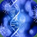 Virus and Bacteria 2.3