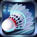 Badminton Legend 3.0.3913