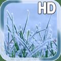 Winter Grass LWP Free 1.1