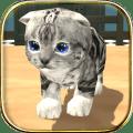 com.hgamesart.catsimulator 1.021