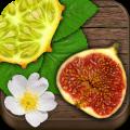 Exotic Fruits & Vegetables PRO 1.09