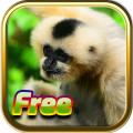 Free Animal Games 3.1.6