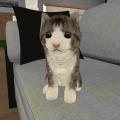 Kitty Cat Simulator 1.3