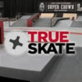 True Skate game and guide download 3.9.0.2.1