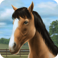 My Horse 1.37.1