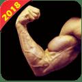 Home Workout Gym-No Equipment 1.1.4