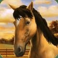 My Horse 1.28.1