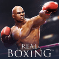 Real Boxing 2.6.1c