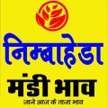 निम्बाहेड़ा मंडी भाव /Nimbahera mandi Bhav 9.8