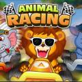 Rush Hour - Animal Racing 5