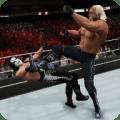 Top WWE 2k Tips 1.0