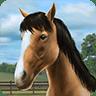 My Horse 1.31.1