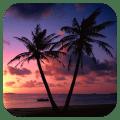 Beach Sunset Live Wallpaper 1.11