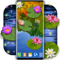 Water Lily Live Wallpaper 🌺 Flowers Wallpapers 6.0.3