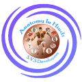 Anatomy & Physiology In Hindi V2.1.6