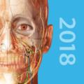 Human Anatomy Atlas 2018: Complete 3D Human Body 2018.4.44