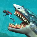 Whale Shark Attack Simulator 1.4c