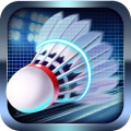 Badminton Legend 3D 2.8.3106