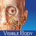 Human Anatomy Atlas SP 5.0.43
