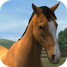 My Horse 1.14.6